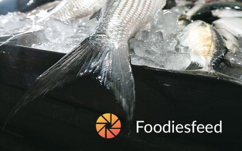 Foodies Feed   Free Stockphoto Website